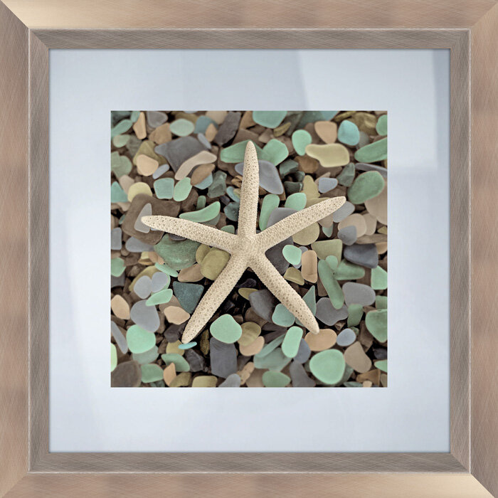 Highland Dunes \'Sea Glass Starfish\' Framed Photographic Print ...