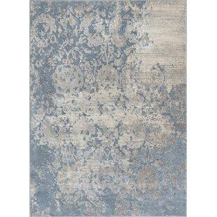 Pearl Ora Modern Vintage Distressed Soft Blue Grey Rug