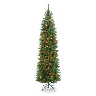 Fir 6.5u0027 Pencil Tree