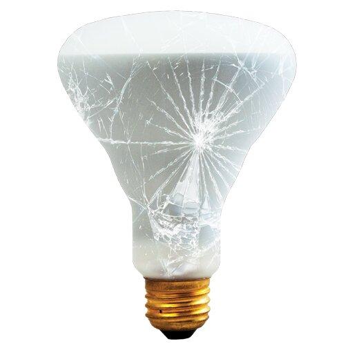 65W E26 Dimmable Incandescent Spotlight Light Bulb