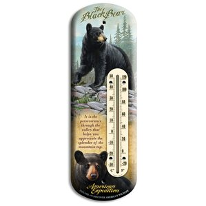 Tin Porch Thermometer