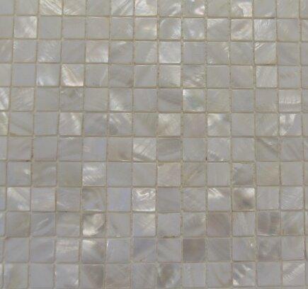 Mesh Mounted 1 X Authentic Polished Seashell Mosaic Tile