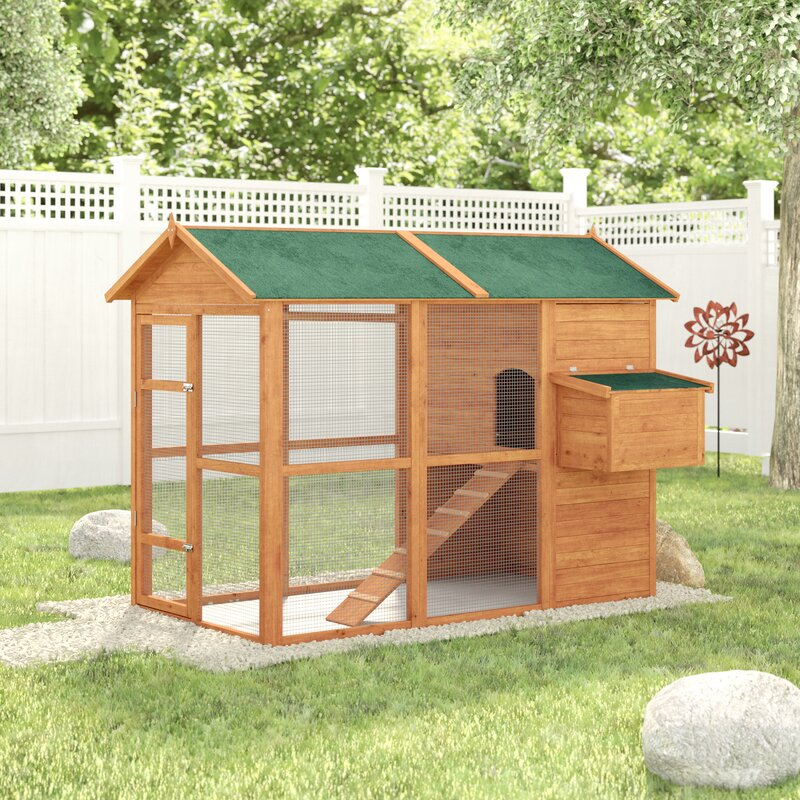 archie \u0026 oscar auggie deluxe large backyard chicken coop witharchie \u0026 oscar auggie deluxe large backyard chicken coop with chicken run \u0026 reviews wayfair