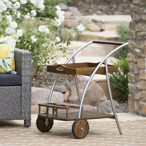 Ayala Outdoor Bar Cart by Ivy Bronx