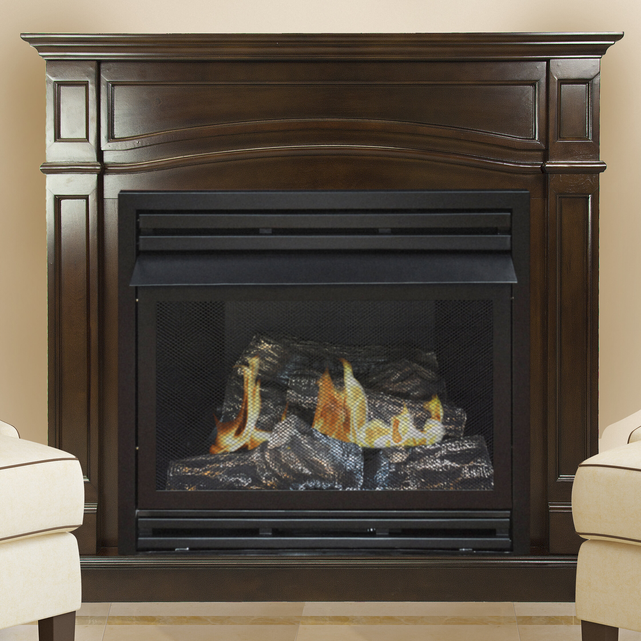 Darby Home Co Shayne Vent Free Natural Gas Fireplace Wayfair