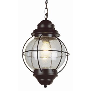 Hanging Outdoor Light Fixtures Outdoor hanging lights youll love wayfair ervin 1 light outdoor hanging lantern workwithnaturefo