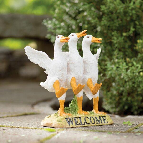 Garden Ducks Wayfair
