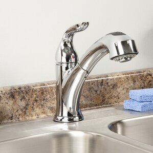 Waxman AquaLife Single Handle Pull-Out Kitchen Faucet with 2 Spray Settings