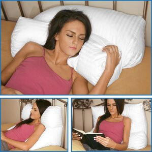 Multi Position Fiber Standard Pillow by Deluxe Comfort