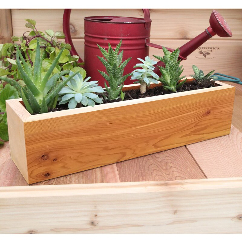 Gronomics succulent cedar planter box reviews for Wayfair garden box