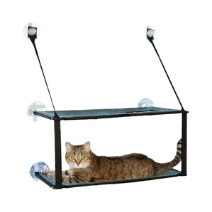 Cat Beds - 22 awesome pieces furniture every cat owner will love