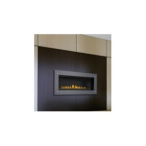 Direct Wall Mount Gas Fireplace by Napoleon