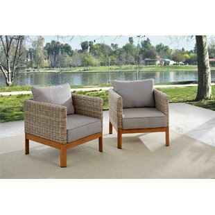 Groovy Adjustable Patio Lounge Chairs Wayfair Machost Co Dining Chair Design Ideas Machostcouk