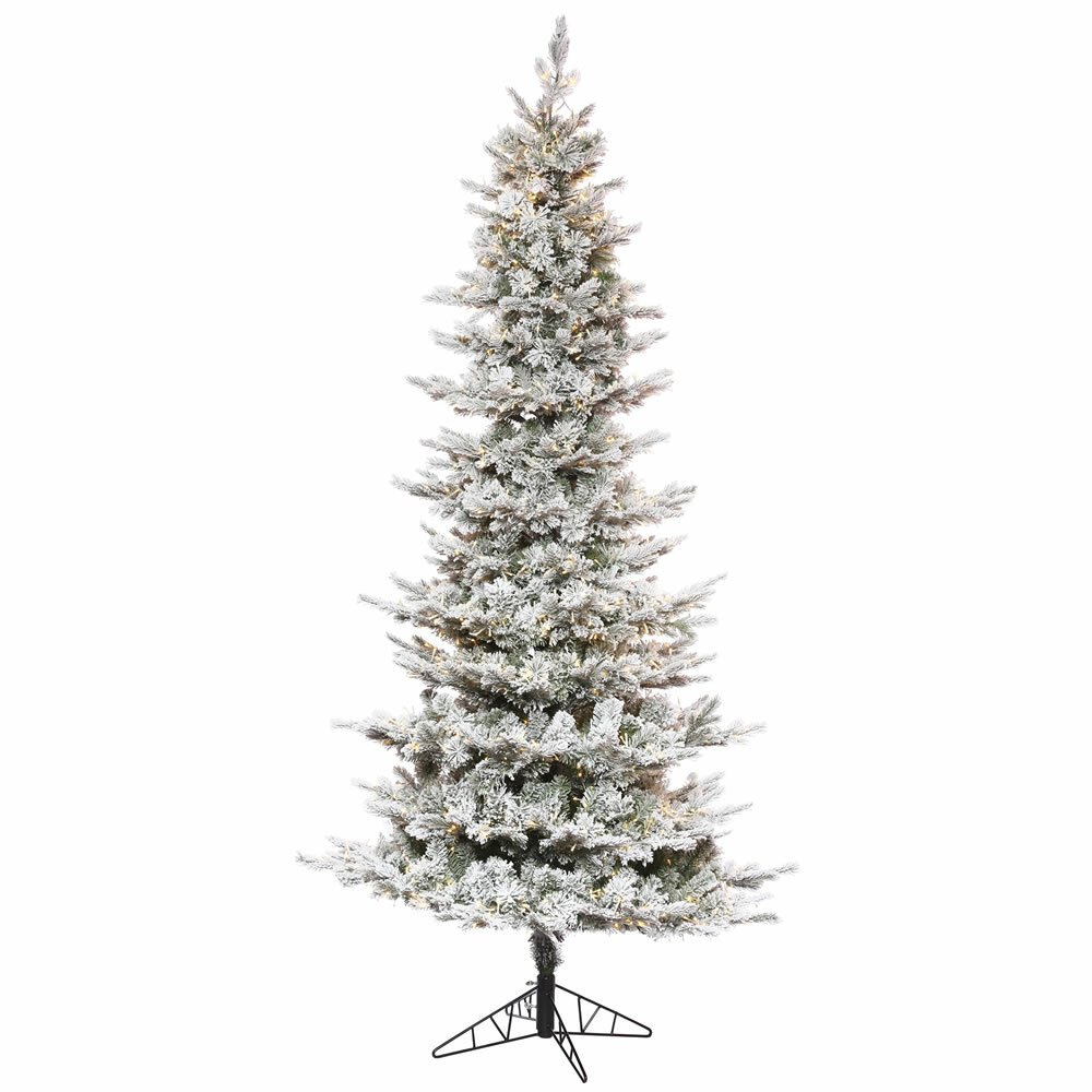 the holiday aisle 12 white pine trees artificial chritmas tree with 3400 low voltage led clearwhite lights with stand wayfair
