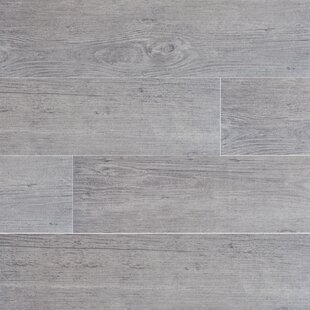 Sonoma Driftwood 6 X 24 Ceramic Wood Look Tile In Gray