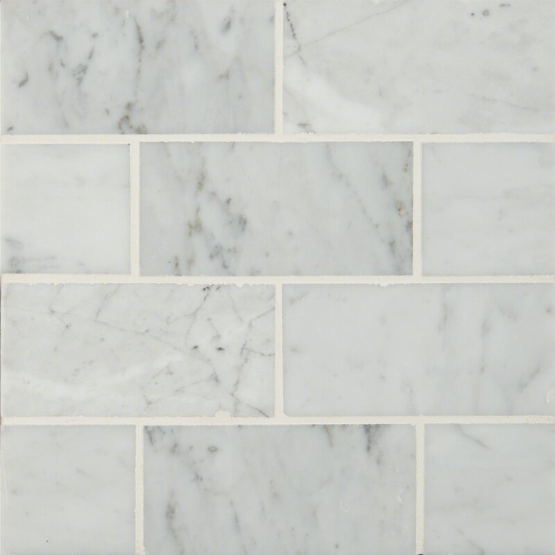 Msi 3 X 6 Polished Marble Tile In Carrara White Reviews Wayfair