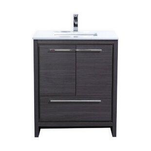 Modern Grey Bathroom Vanities AllModern - 30 grey bathroom vanity