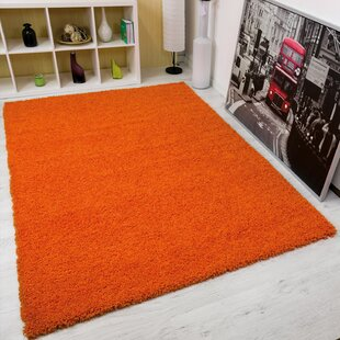 Xs Orange Rugs You Ll Love Wayfair Co Uk