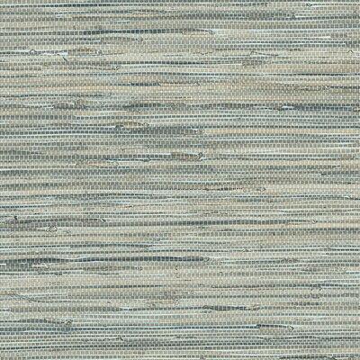 Highland Dunes Usher 32.7' x 20.5 Wallpaper Color: Blue / Taupe