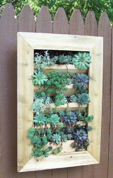Barharborcedar Wood Wall Planter Amp Reviews Wayfair