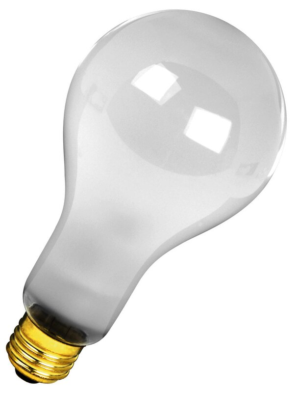 120-Volt Incandescent Light Bulb