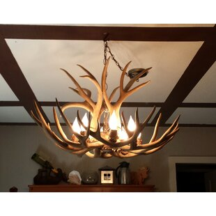 Doliya Antler Mule Deer Single Tier 6 Light Candle Style Chandelier