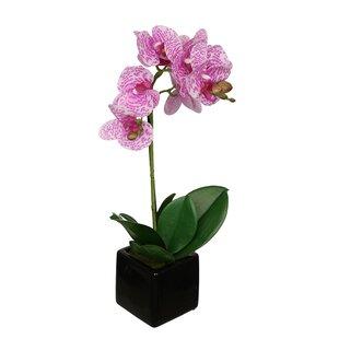 Purple flower arrangements youll love wayfair purple flower arrangements mightylinksfo