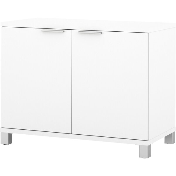Mercury Row Ariana 2 Door Storage Cabinet Reviews Wayfair
