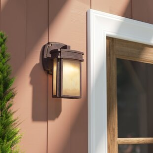 outdoor carriage lights black carriage club 1light outdoor sconce black lights wayfair