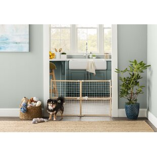 Pet Dog Gates Youll Love Wayfair