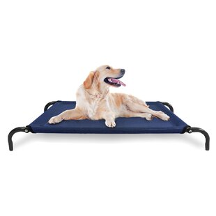 Modern Dog Bed | Wayfair