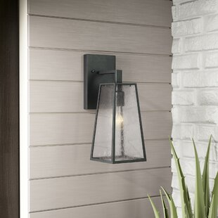 Industrial outdoor wall lighting youll love wayfair karly 1 light outdoor wall lantern aloadofball Image collections