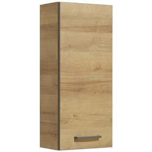 Archibald 30 x 70cm Wall Mounted Cabinet by Quickset