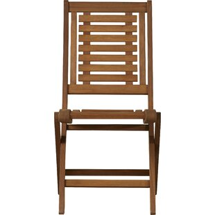 Roseland Folding Patio Dining Chair (Set Of 2)