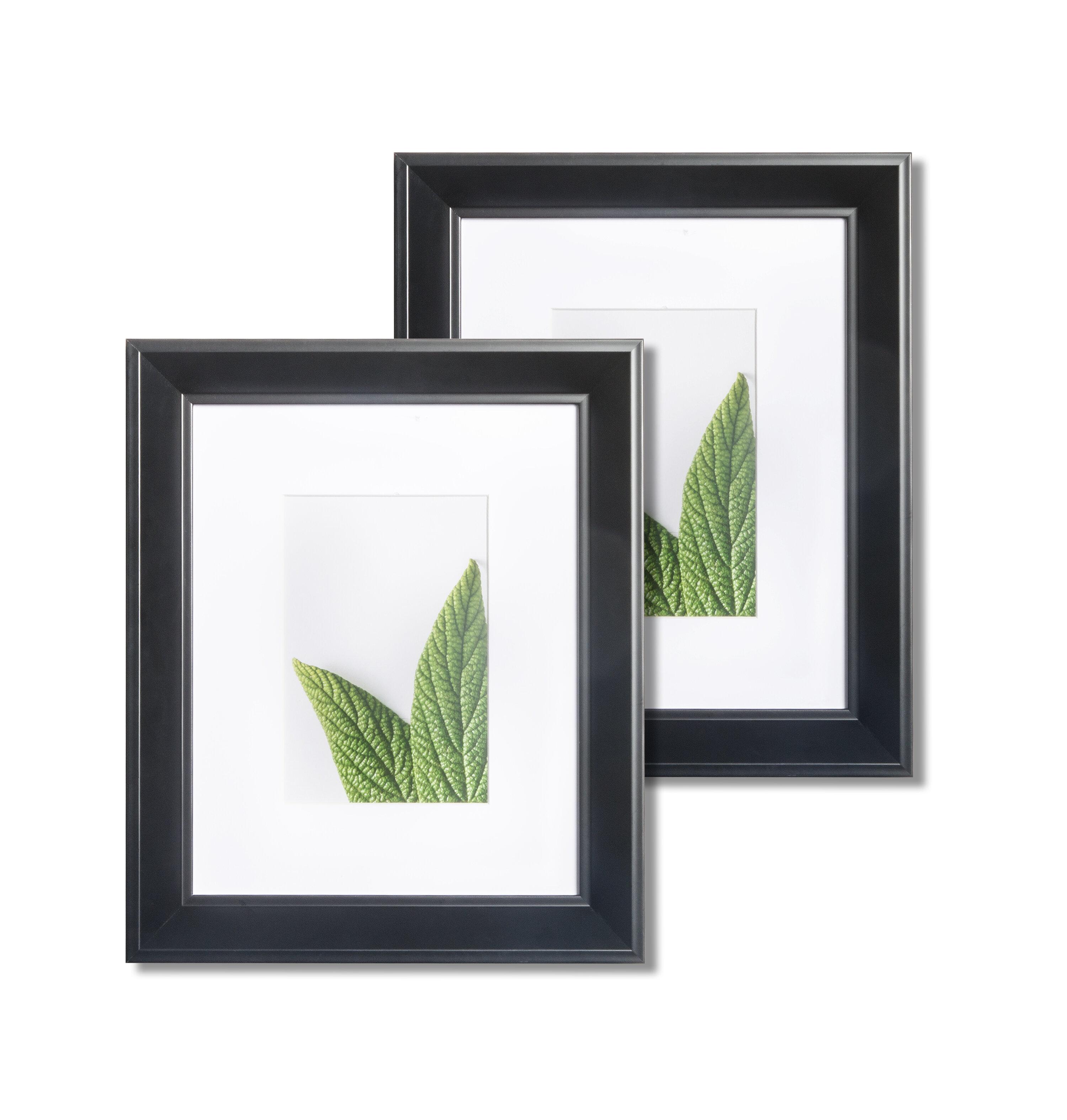 Kitchen Cabinet Warehouse Manassas Va: Fleur De Lis Living Manassas Wide Bevel Picture Frame