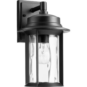 Osmond Modern 1-Light Outdoor Wall Lantern
