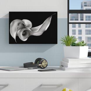 Best Calla Lily Wall Art | Wayfair DS29