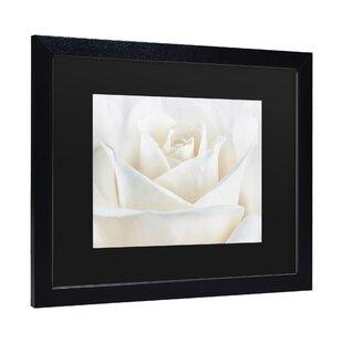 847dc5f9cdb Black Roses Wall Art You ll Love