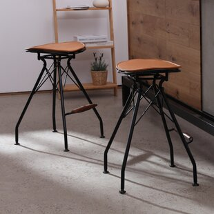 Belgr Industrial Metal Bar Stool (Set of 2)