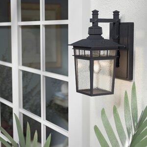 Valeri 1-Light Outdoor Wall Lantern