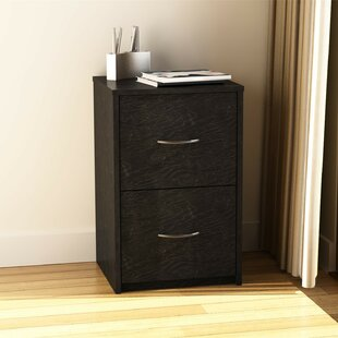 Black Wood Filing Cabinets Youu0027ll Love | Wayfair