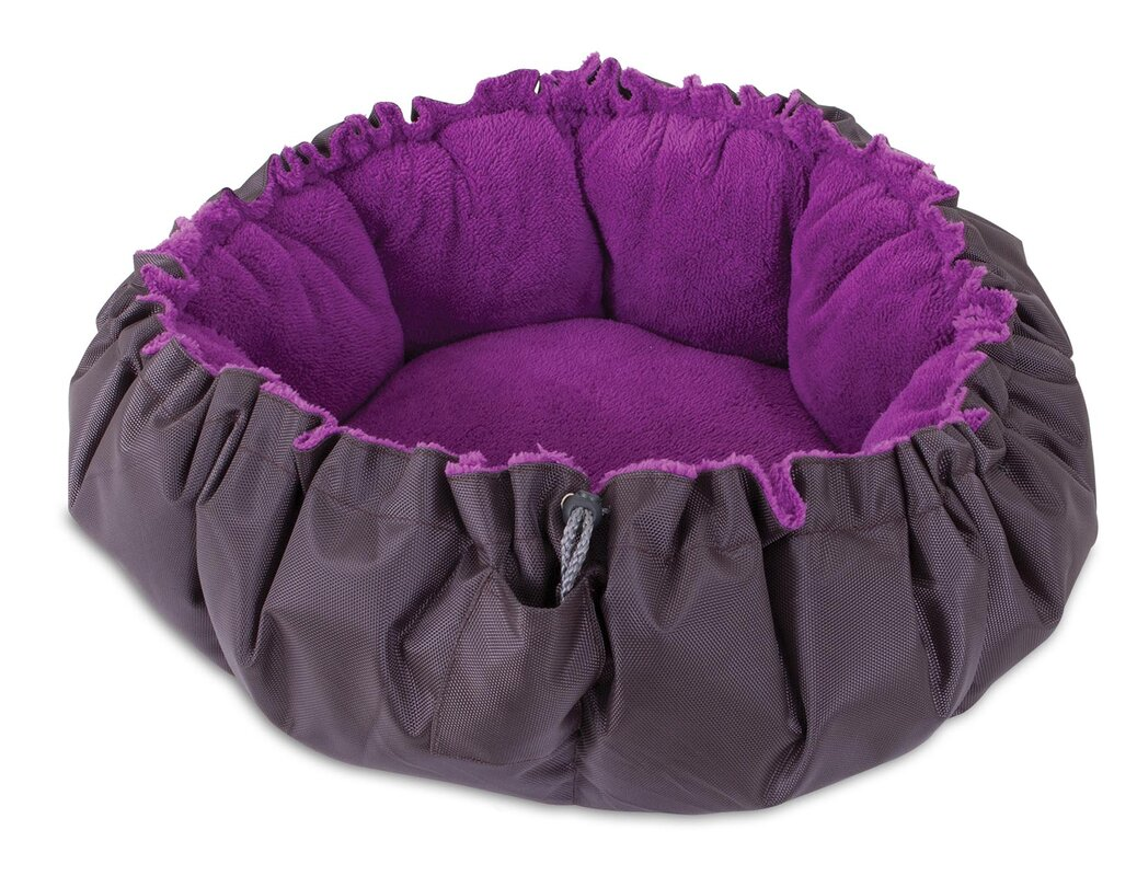 jngy comfy clamshell cat bed & reviews | wayfair
