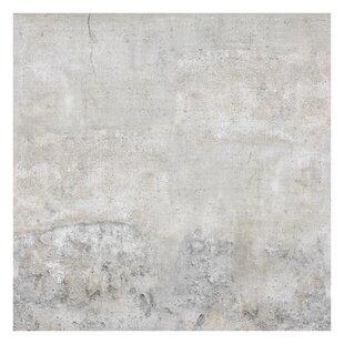 Shabby Concrete | Wayfair co uk