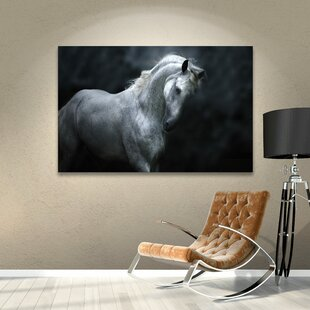 Moonlight Stallion Photographic Print On Wrapped Canvas