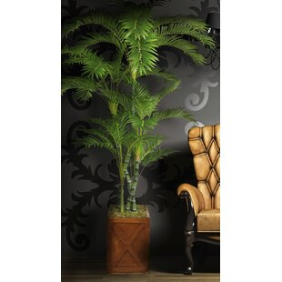 Palm You'll | Wayfair on