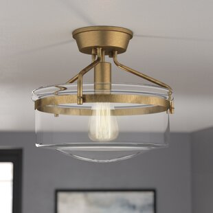 Frannie 1 Light Semi Flush Mount