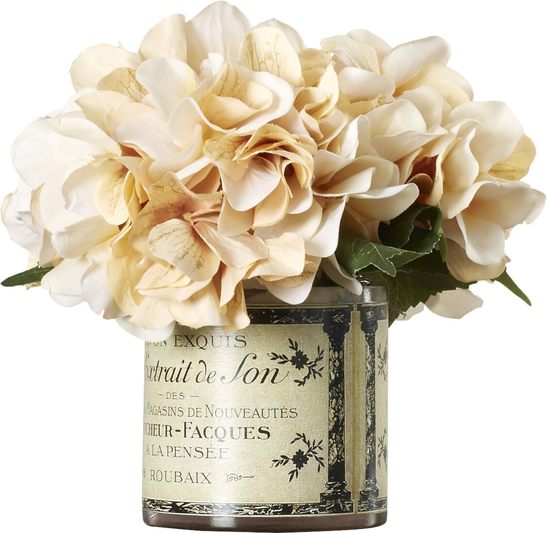 Adelaide Hydrangea In French Labeled Pot Reviews Joss Main