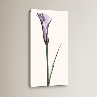 Popular Calla Lily Wall Art | Wayfair DL72