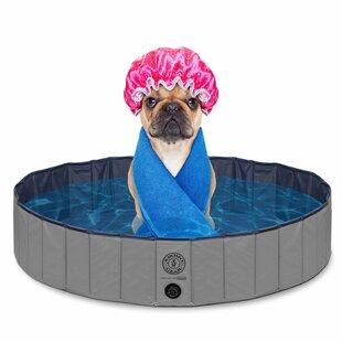 Best Dog Grooming Tables & Bath Tubs You'll Love | Wayfair FG08