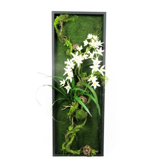 a40b34a0be6 Wall Hanging of Faux Moss and Orchids